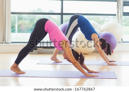 Side view of two fit young women doing the Downward Facing Dog pose on exercise mats - stock photo