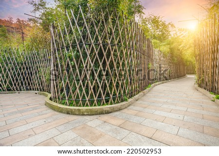 Sidewalk in the bamboo forest - stock photo