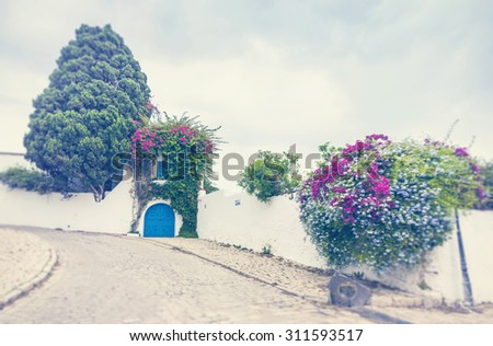 Sidi Bou Said - typical building with white walls, blue doors and windows, Tunisia. Blur Shot with a selective focus. Instagram toning effect. - stock photo