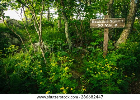 Sign for Hawksbill Summit, in Shenandoah National Park, Virginia. - stock photo