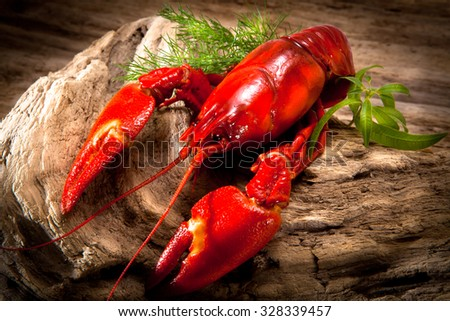 Signal crayfish on wooden trunk - stock photo