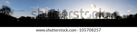 Silhouette Naked Tree during Autumn - stock photo