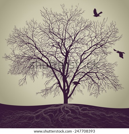 Silhouette of a big tree with a root and birds.  - stock photo