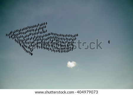 Silhouette of a bird flying away from the flock for the concept of odd one out.  - stock photo
