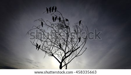 Silhouette of a flock of raven perching on a barren twisted tree against a surreal apocalyptic sky for the concept: social grapevine. - stock photo