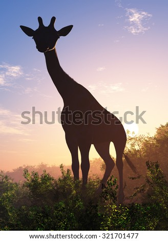 Silhouette of a giraffe at sunset. - stock photo