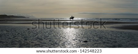 Silhouette of a horse rider on the beach. - stock photo