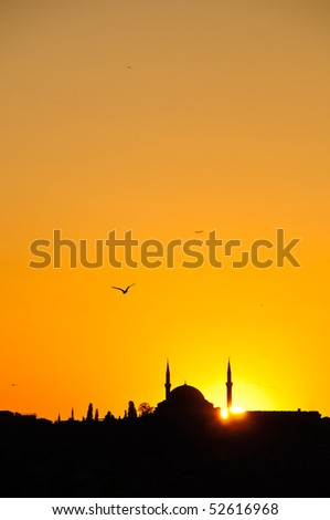 Silhouette of a Mosque in Istanbul with Birds and Setting sun - stock photo