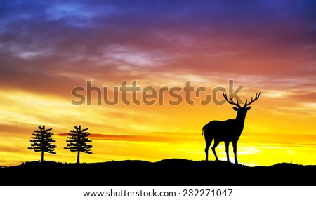 Silhouette of a reindeer in the sunset - stock photo
