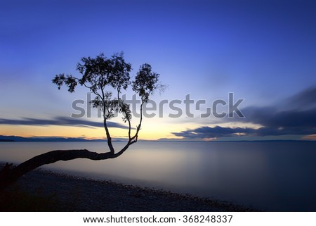silhouette of a tree on a long exposure on the shores of Lake Baikal - stock photo