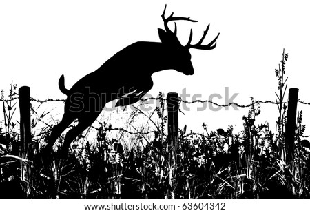 Silhouette of a Whitetail Buck Deer Leaping a Barbed Wire Fence - stock photo