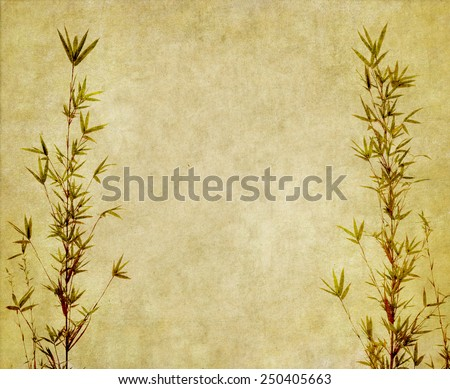 Silhouette of branches of a bamboo on old paper background - stock photo