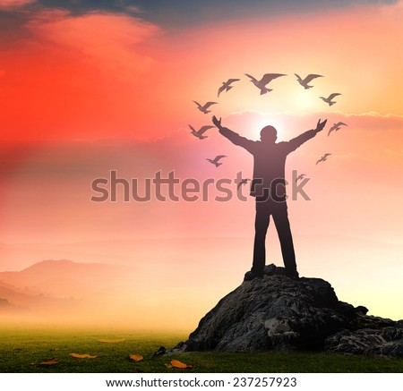 Silhouette of businessman with hands raised to birds flying in the shape of heart against beautiful autumn sunset background. Health Care, Sync concept. - stock photo