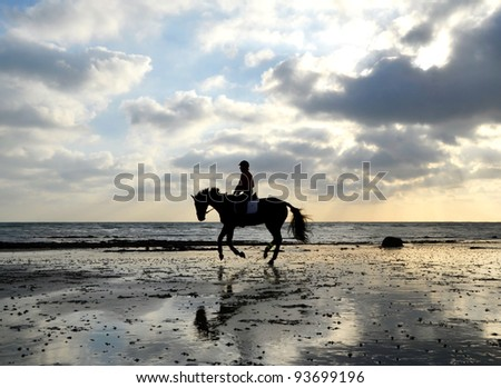 Silhouette of Female Horse Rider Galloping on the Sandy Beach with Reflection of the Sky - stock photo