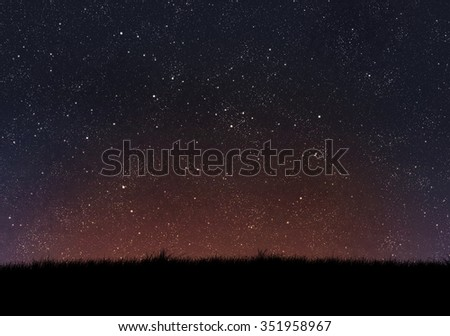 silhouette of grass on night sky background - stock photo