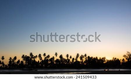 Silhouette of palm trees against clear sunset sky at Praia dos Garcez, Itaparica Island, Bahia, Brazil. - stock photo