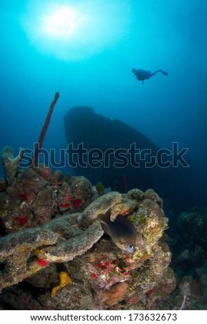 Silhouette of Scuba Diver above shipwreck Atlantic Princes in Caribbean, Dominican Republic. - stock photo