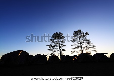 silhouette of tent and tree - stock photo