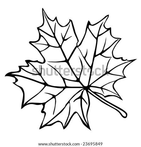 Maple leaf tattoo stock photos images amp pictures shutterstock
