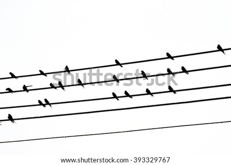 silhouette of wire bird - stock photo