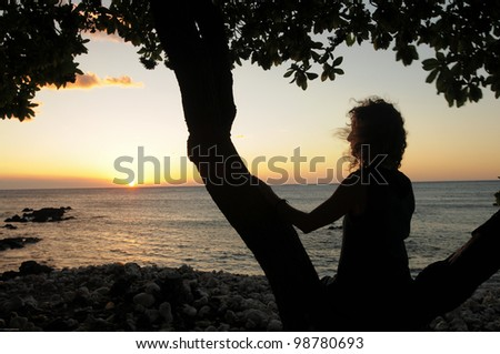 silhouette of woman sitting in tree on a beach watching sunset - stock photo