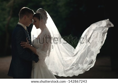 silhouette portrait of love couple wedding bride and groom - stock photo