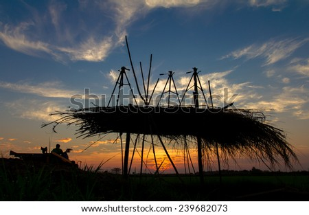 Silhouette thatch-roofed shacks that are situated tripod and farmers to farm. - stock photo