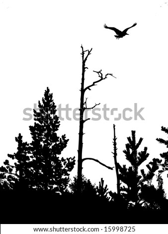 silhouette wood on white background - stock photo