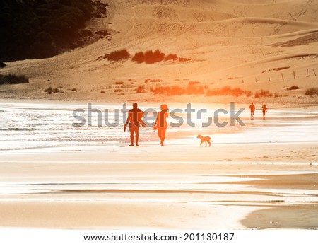 Silhouetted couple walking a dog on the beach - stock photo
