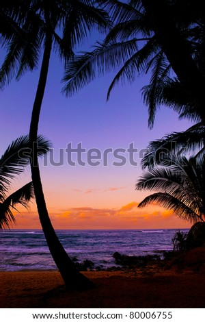 Silhouetted palm trees at a tropical beach sunset - stock photo