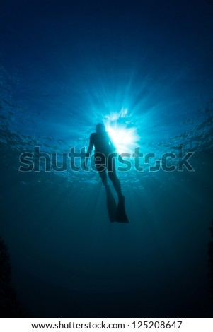 silhouettes of a young women free diving in the pacific ocean - stock photo