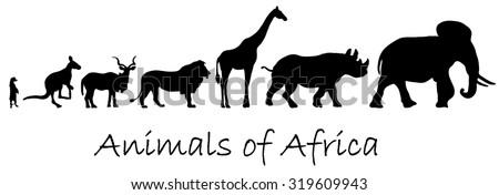 Silhouettes of animals of Africa: meerkat, kangaroo, kudu antelope, lion, giraffe, rhino, elephant isolated on white - stock photo