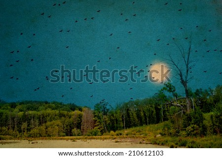Silhouettes of many birds on the background of the dark blue sky and the full moon. Forest lake. Halloween background. (photo on the background of old paper). - stock photo