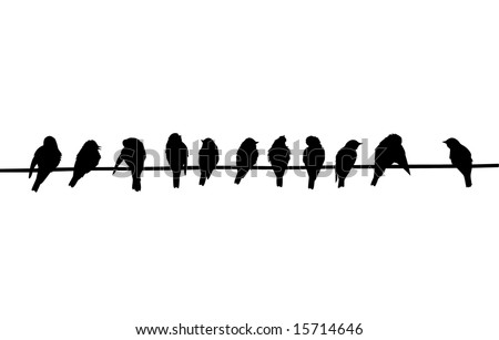 silhouettes of the birds sitting on electric wire - stock photo