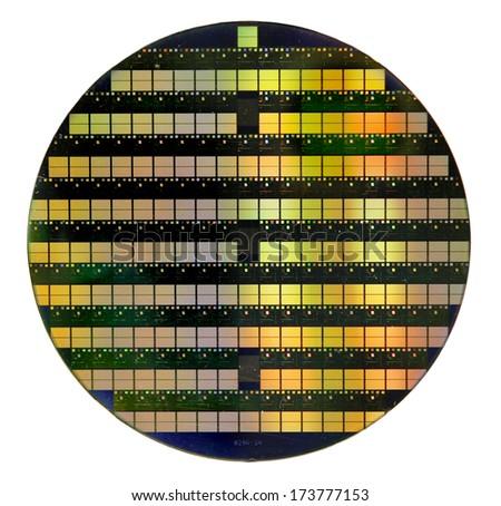Silicon wafer - stock photo