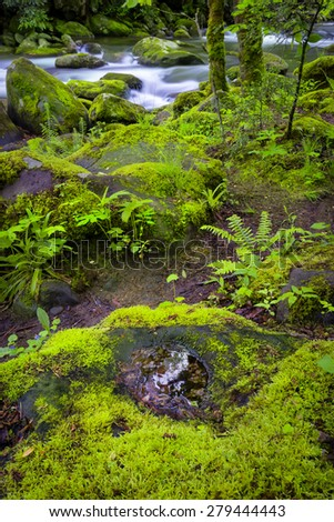 Silky stream and sky reflections captured in the Smoky Mountains during springtime - stock photo