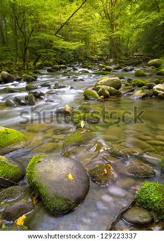 Silky stream featuring mossy rocks near Greenbrier Road in the Smoky Mountains - stock photo