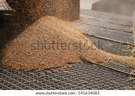 Silo for wheat, entrance through silo grid - stock photo