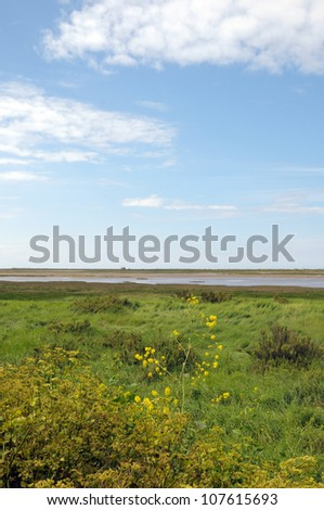 Silted marsh outside Blakeney on Norfolk coast - stock photo