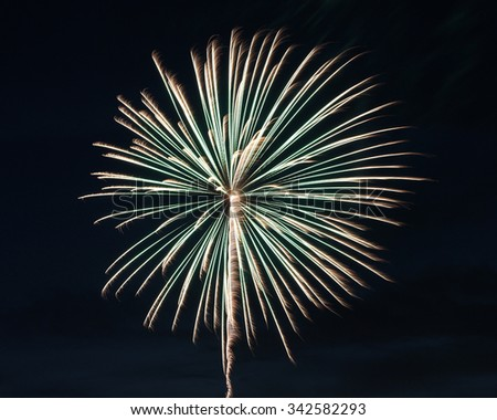 Silver Green Single Firework - stock photo