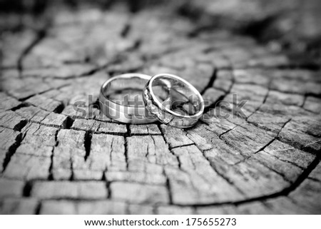 silver wedding rings, black and white - stock photo