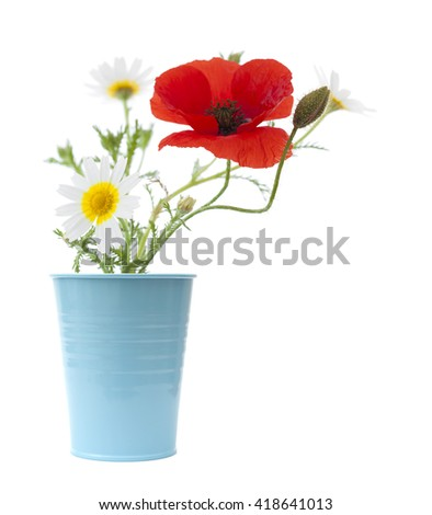simple posy of Poppy and garland chrysanthemums isolated on white background - stock photo