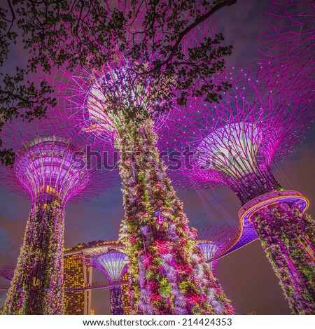 SINGAPORE-AUG 31: Night view of The Supertree Grove at Gardens by the Bay on august 31, 2014 in Singapore. Spanning 101 hectares, and five-minute walk from Bayfront MRT Station.  - stock photo