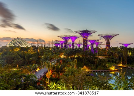 SINGAPORE-JUNE 28,2015: Night view of The Super Tree Grove at Gardens by the Bay in Singapore. Spanning 101 hectares, and five-minute walk from Bayfront MRT Station. - stock photo