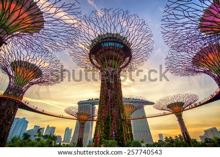Singapore JUNE 15 , The Supertree at Gardens by the Bay and Marina Bay Sands on 15 June 2013 - stock photo