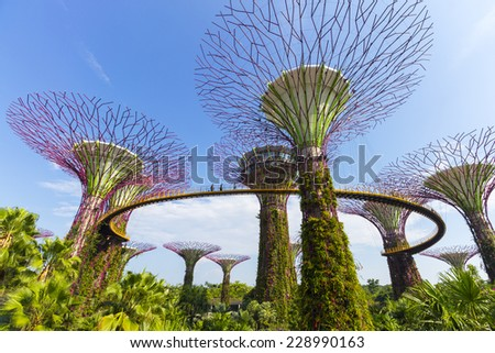 Singapore - October 23, 2014: Gardens by the Bay brings to life vision of creating a City in a Garden of Singapore with the perfect environment. - stock photo