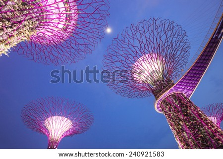 SINGAPORE- October 31: Night view of The Supertree Grove at Gardens by the Bay on 31st October, 2014 Singapore. Spanning 101 hectares, and five-minute walk from Bayfront MRT Station - stock photo