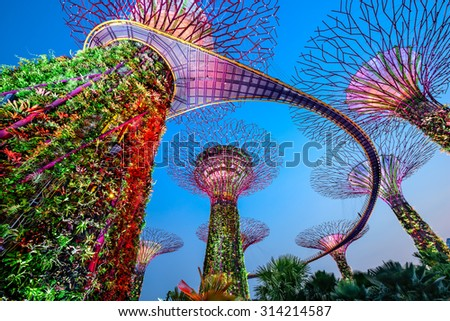 SINGAPORE - SEPTEMBER 5, 2015: Supertrees at Gardens by the bay. The tree-like structures are fitted with environmental technologies that mimic the ecological function of trees. - stock photo