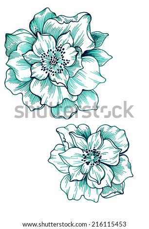 singe floral motifs. beautiful flowers - stock photo