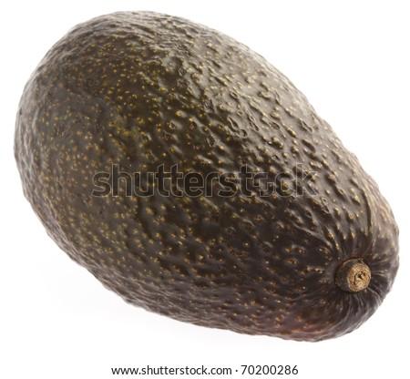 single avocado isolated on a white background - stock photo